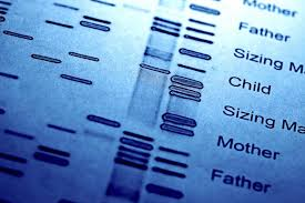 reasons-for-getting-dna-test-nyc-02