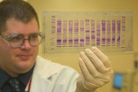 dna-testing-police-courts-forensics-02