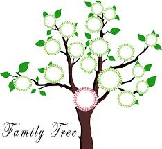 who-is-your-family-easy-dna-test-02