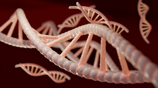 Best Family DNA testing Queens NY