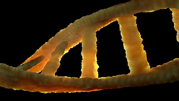 What is DNA for testing